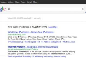 MI IP en Google