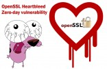 OpenSSL-Heartbleed