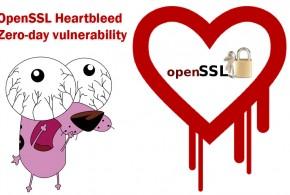 OpenSSL-Heartbleed