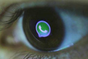 Seguridad WhatsApp
