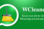 Limpiar datos e historial de WhatsApp en Android