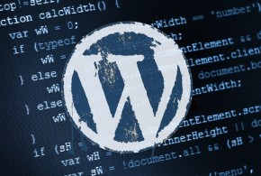 WordPress código