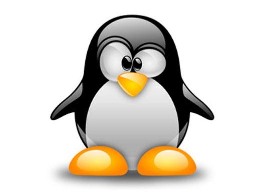 El kernel de Linux valorado en 1000 millones de euros.